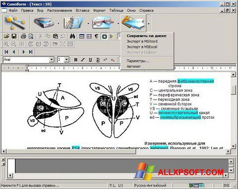स्क्रीनशॉट CuneiForm Windows XP